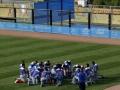 Equipo de Beísbol de la República Dominicana
