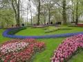 Visita-jardin-keukenhof-mayo-2015 (10).jpg