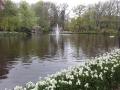 Visita-jardin-keukenhof-mayo-2015 (11).jpg