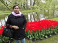 Visita-jardin-keukenhof-mayo-2015 (14).jpg